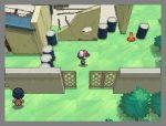 pokemon_gen5_4