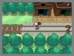 pokemon_gen5_5